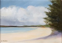 north end of long boat key by anne packard