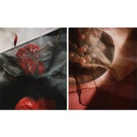 two photographs by sally mann