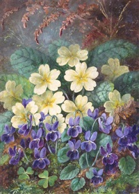primroses and violets by albert durer lucas