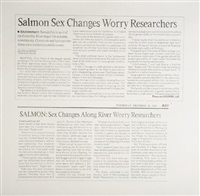 untitled (salmon sex changes) by karl haendel