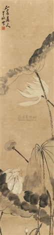 墨荷 by wang molin