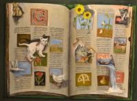 serie del diccionario by eduardo gualdoni