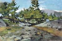 paesaggio by domenico rabioglio