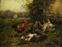 der hühnerhof by a. hofmann
