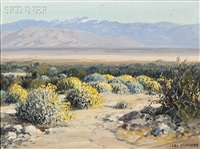 encelia - desert palm springs calif by carl sammons