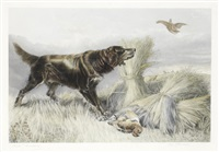 a setter and two grouse by john cother webb