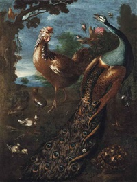 a peacock, a cockerel, a tortoise and other birds in a landscape by marmaduke cradock