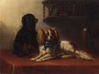 two king charles spaniels with a lute on a draped table by bernard de gempt