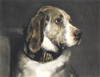 portrait of a dog by william henry simmons