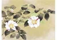 camellia by toshiyuki