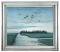 ducks returning to the decoy at daybreak by peter markham scott