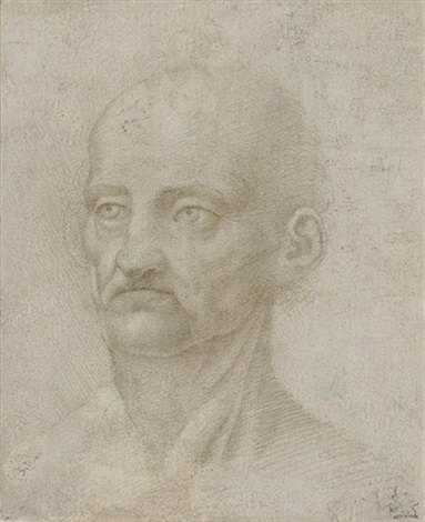 head of an old man by leonardo da vinci