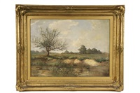 summer landscape with stream by ripley o. anthony