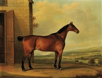coach horse, bob, aged 21 years by thomas weaver