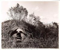 portrait in an allegorical landscape by jerry uelsmann