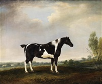 a piebald cob in a landscape by thomas weaver