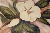 magnolia of shreveport, louisiana, u.s.a by amos lee armstrong