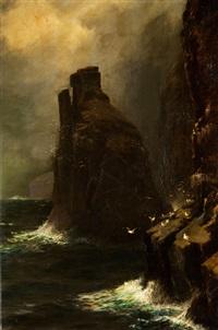 romantische küstenlandschaft mit steilem felsen, von möwen bevölkert by james h.c. millar