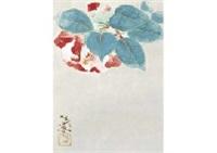 camellia by tadashi moriya