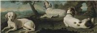 tre cani da caccia by arcangelo resani