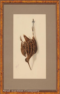 nature morte: snipe by george luis viavant