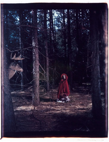 little red riding hood by william wegman