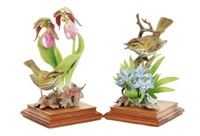 oven birds: oven bird and lady's slipper orchid; oven bird and crested iris (2 works) by dorothy doughty