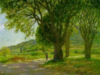 schattenspendende bäume in südfrankreich by gabriel amoretti