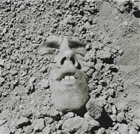 untitled by david wojnarowicz