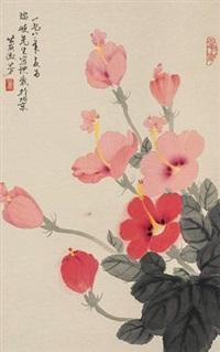 扶桑花 by xiao shufang