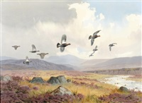 sutherland hills with grouse in flight by john cyril harrison