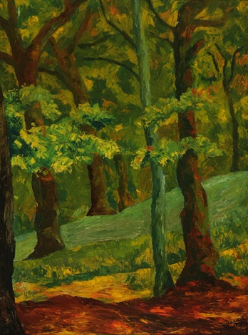 view of a forest interior by johannes fischer