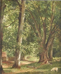 under the limes, great moor park by george lipton