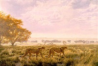 kalahari morning - november by paul augustinus
