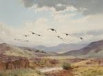 straight over, grouse by john cyril harrison