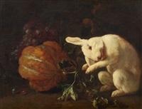 stillleben mit früchten und weißem kaninchen by franz werner von tamm