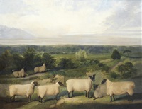 sheep in a landscape by british school (19)