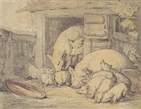a pigsty with sows and piglets by thomas rowlandson