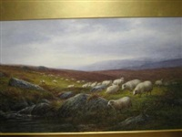 sheep grazing at langdale pike by william woodhouse