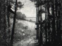 sommer am zwischenahner meer by emy rogge