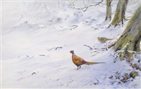 pheasant in the snow by george edward lodge