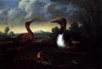 wasservögel in einer landschaft by josef franz adolph
