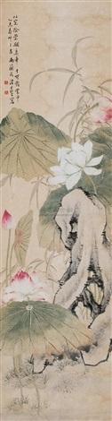 荷花湖石 by tang shishu