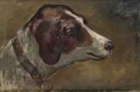 cabeza de perro by eugenio oliva rodrigo