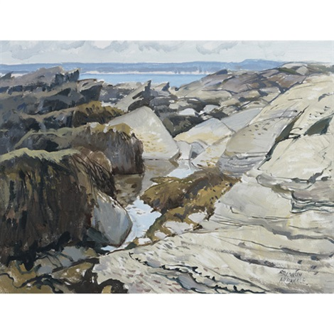 tidal pool prouts neck maine by george franklin arbuckle