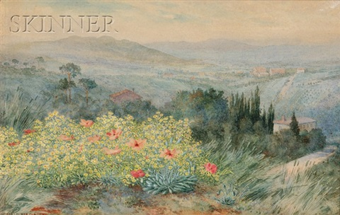 a panoramic view of siena italy by george elbert burr