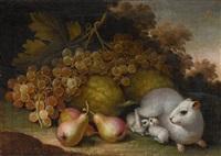 früchtestillleben mit meerschweinchen by jacob samuel beck