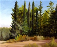 ben shemen forest by yehuda armoni