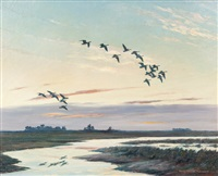 honkers in the sacremento valley by harry curieux adamson