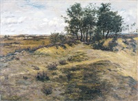les dunes, calmpthout by theodor verstraete